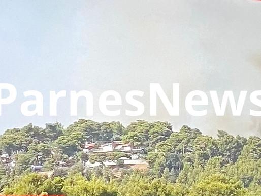 Φωτιά στην Βαρυμπόμπη: Σε απόσταση αναπνοής από τα βασιλικά ανάκτορα η πυρκαγιά