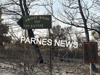 Οδοιπορικό του PARNES NEWS στην Βαρυμπόμπη - Σε κατάσταση Έκτακτης Ανάγκης ο Δήμος Αχαρνών
