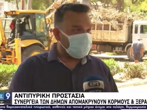 Αγώνας δρόμου για να μαζευτούν τόνοι ξερών χόρτων & κλαδιών σε Θρακομακεδόνες-Βαρυμπόμπη
