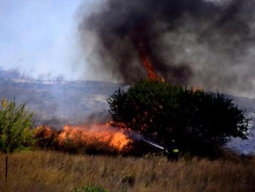 Φωτιά στην Φυλή - Πλησίον του γηπέδου Θρασύβουλου