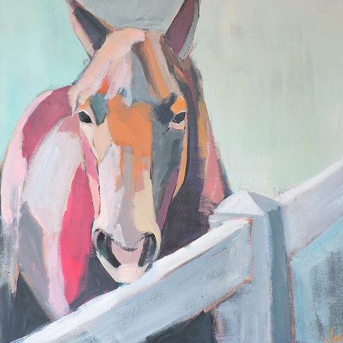 Ben the Horse