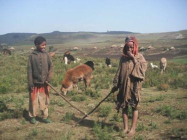 laughing children working in teh fields.