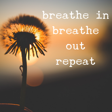 A Single Breath: The Easiest Way to Reduce Stress