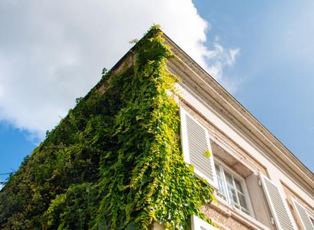 Secret Place #1: Die Orangerie im Salzburger Mirabellgarten