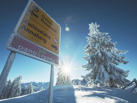 Salzburgs Skigebiete - kleiner Guide