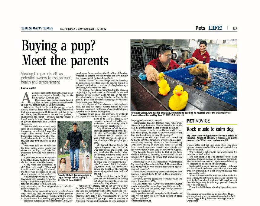 Meet the Parents article.jpg