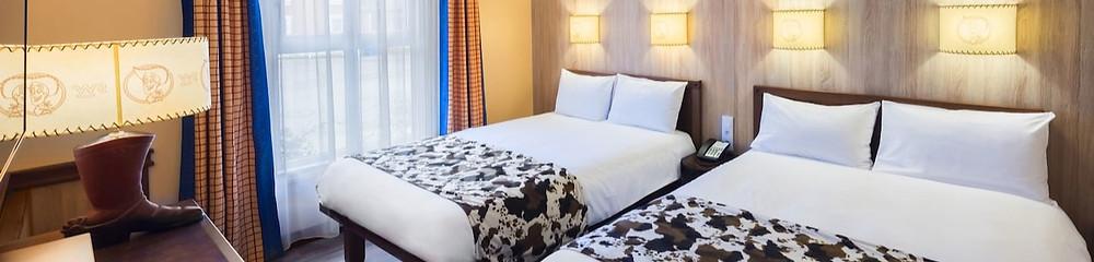 Hoteles FAQ: preguntas frecuentes sobre Hoteles en Disneyland Paris