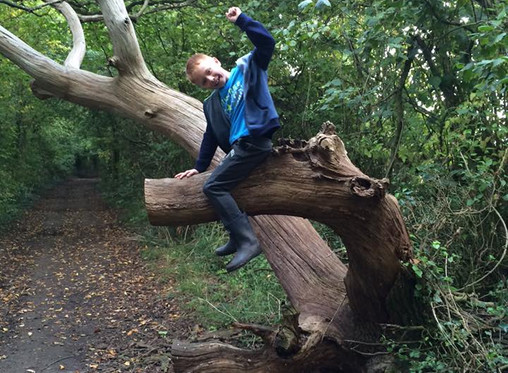 My Journey of being a SEN Mummy - Home Education
