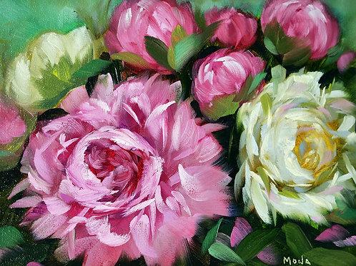 """Fresh peonies"" horizontal oil painting"