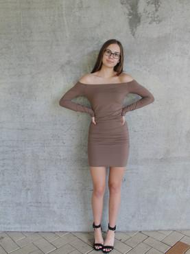 Brown Off Shoulder Bodycon