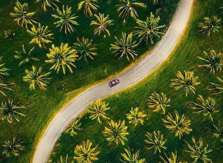 Mérida combatiendo el cambio climático
