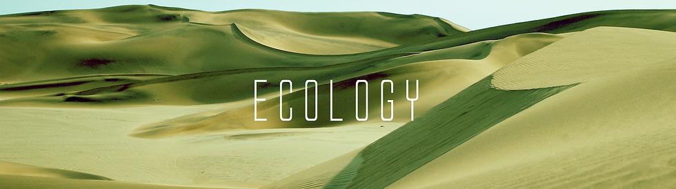 vir website banner ecology.png