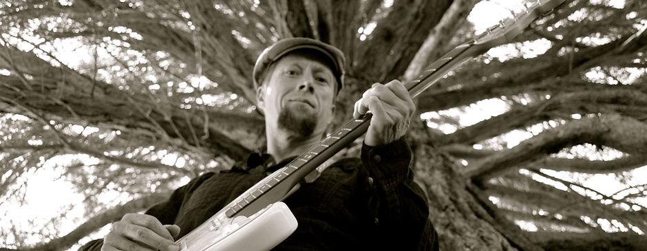 Tree Guitar.JPG