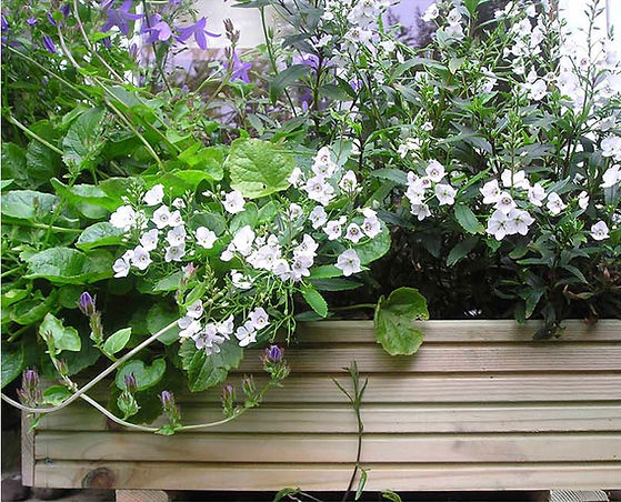 The London Woodwork Class Planter Box filled with flowers