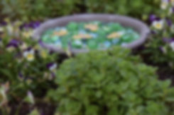 Bee Waterer Garden.jpeg