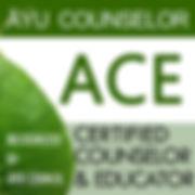 Certified ACE 3000px.jpg