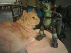 Skittles and Robot try to be friends