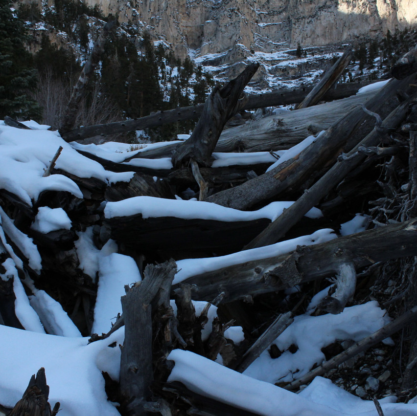 We encountered this natural dam on the strenuous path upward which is what made us thing this is potentially a wash path