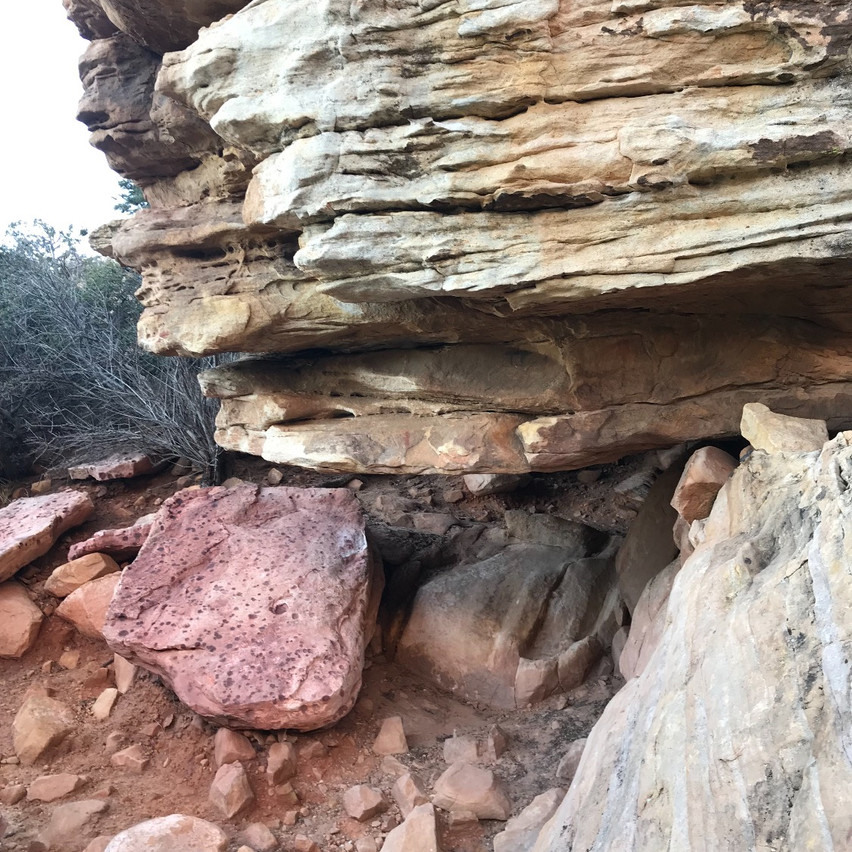 So many differing rock textures can be found around Red Rock