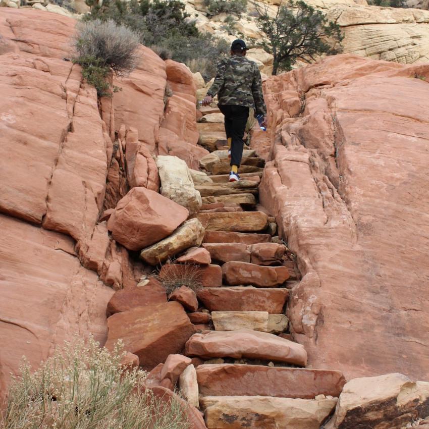 throughout the duration of this hike you will find numerous staircases like this one.