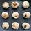 Thumbnail: Salmon Meatballs (Frozen)