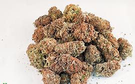 $150 an oz flower deal is back!
