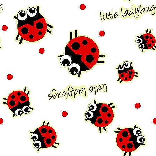 QEOAN - Ladybug