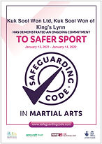 Safeguarding Code Annual Health Check_An