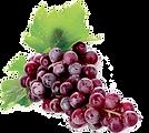 Slushie Grapes Fruit.png