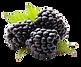 Slushie Apple Blackberry Fruit 2.png