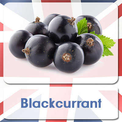 Blackcurrant E-Liquid 10ml