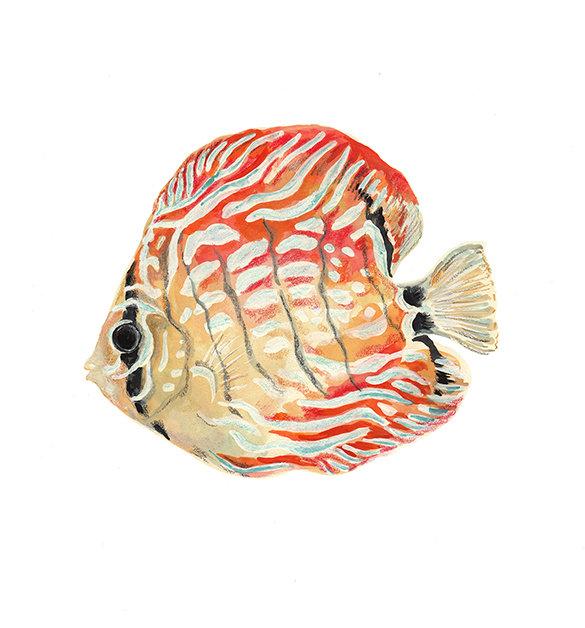 painting_fish_NR100.jpg