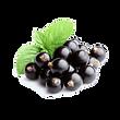 Slushie Blackcurrant Lemonade fruit 1.pn