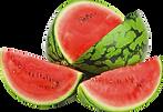 Slushie Watermelon Fruit.png