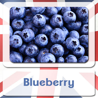 Blueberry E-Liquid 10ml