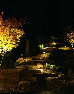 Lighting - Sample 1.jpg