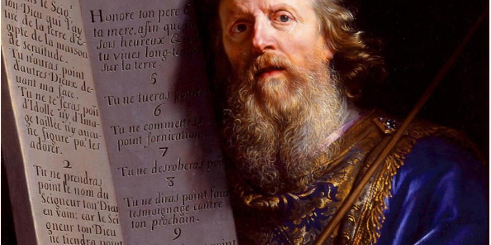The Life of Cosimo de' Medici (Alessio Assonitis)