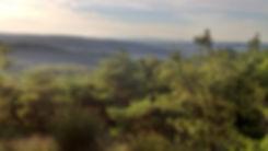 Vue du terrain Happy-Terre