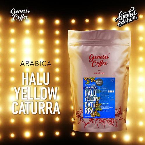 Arabica Halu Yellow Caturra