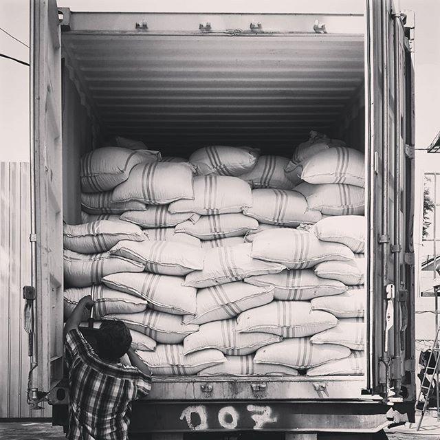 Today's update _genesis_coffee warehouse