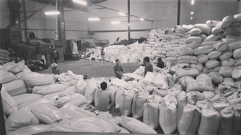 Busy days at our coffee warehouse._._._.