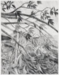 Unit17-TristanUnrau-DrawingStorm.jpg