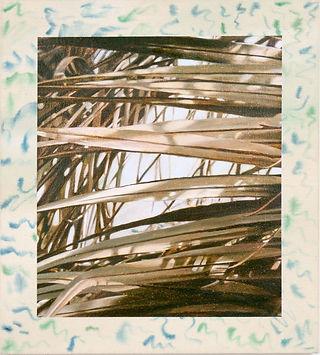 Unit17-TristanUnrau-Palms.jpg
