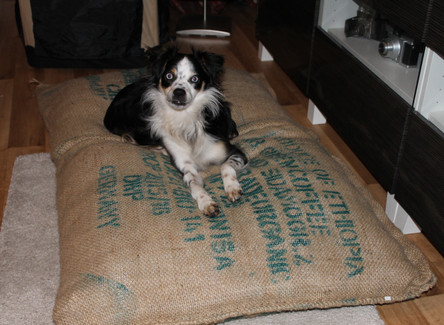 "Hundekissen""Alter Kaffeesack"" in XL"
