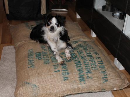 "Hundekissen""Alter Kaffeesack"" in XL"