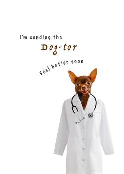 I'm sending the dog-tor