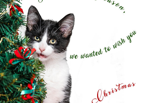 George's Christmas Mew Year