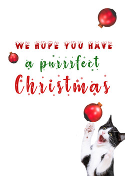 Purfect Christmas