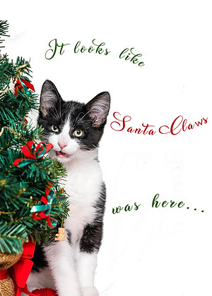 George's Santa Claws Meowy Christmas x25