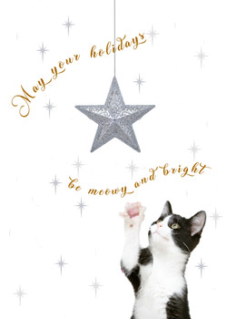 Merry and Bright Star